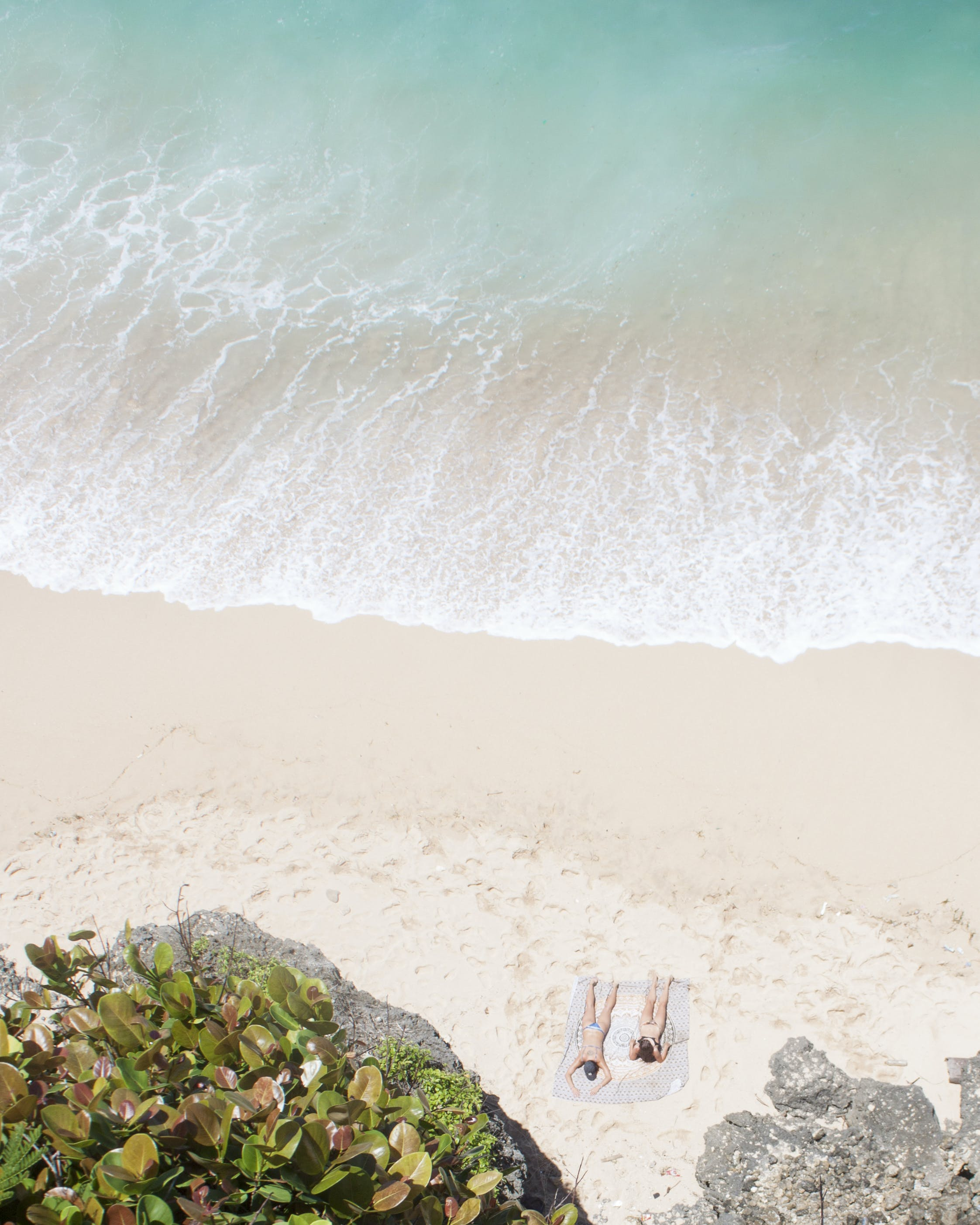 Photo of People Sunbathing on Beach