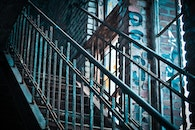 stairs, light, graffiti