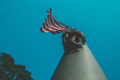 Gratis lagerfoto af administration, amerika, Amerikansk flag, flagstang