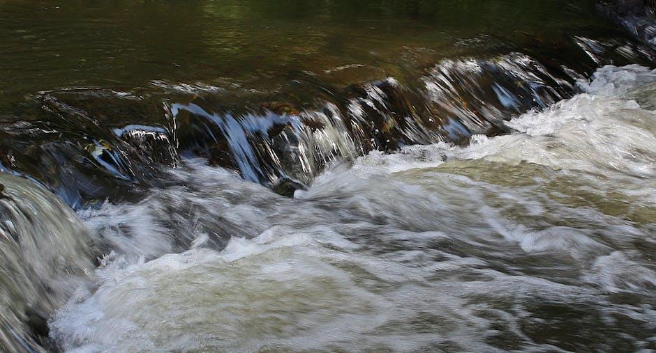 New free stock photo of nature, water, stream
