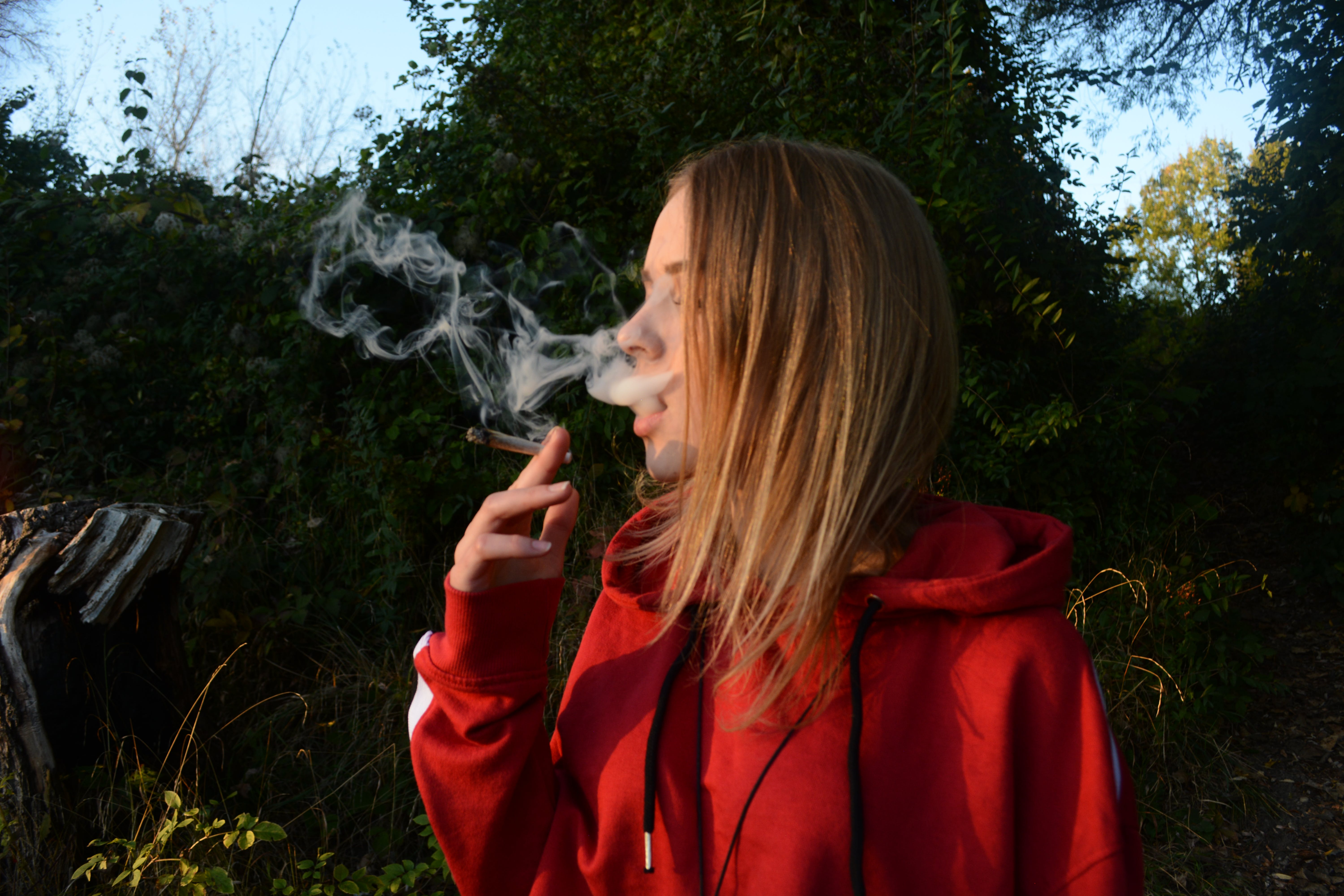 Free stock photo of blond girl, girl, join, weed