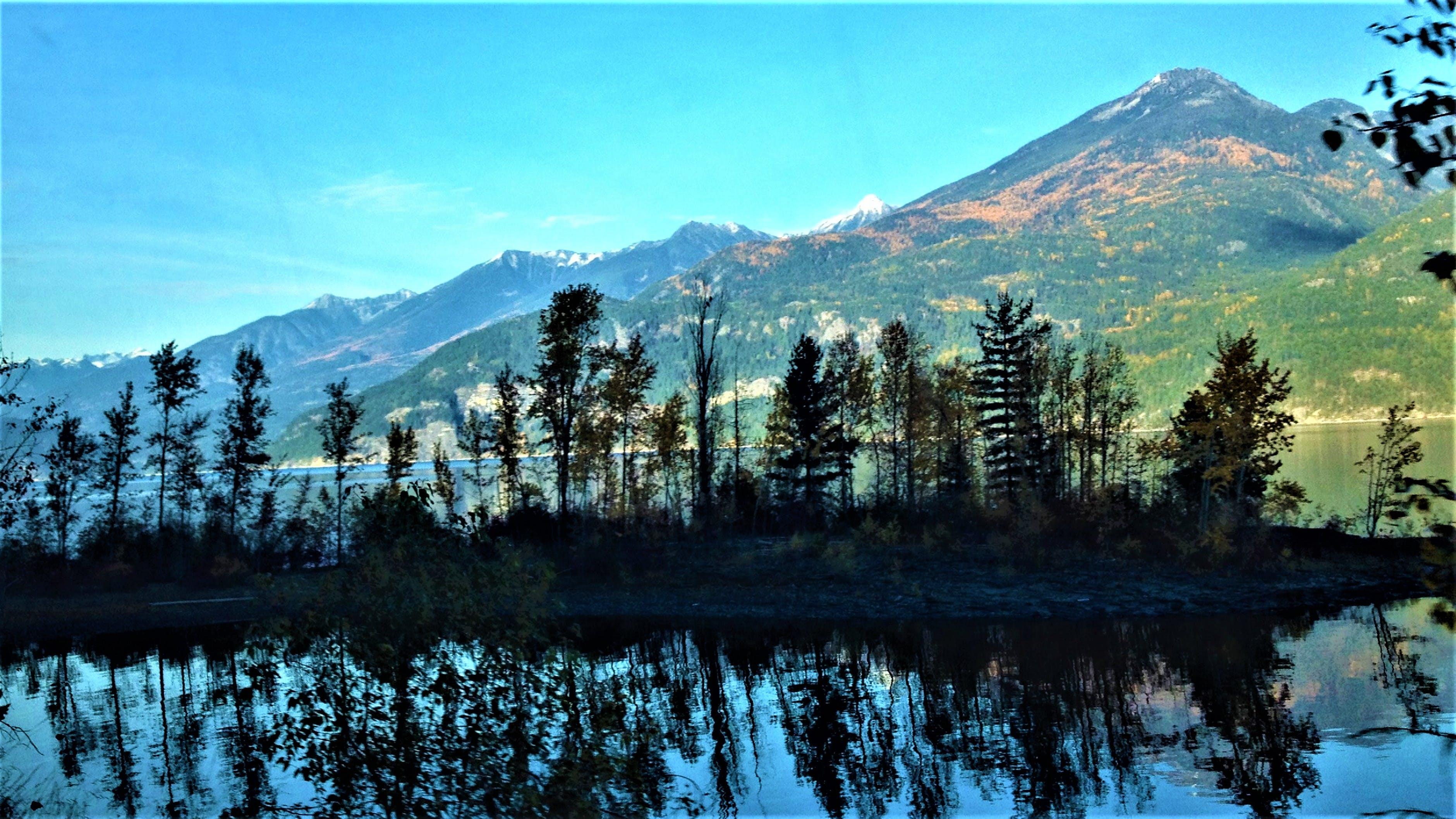 Free stock photo of black, blue, green, lake