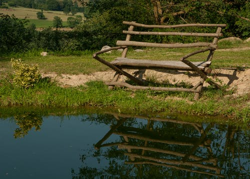 Brown Wooden Bench on Green Grass Near on Body of Water