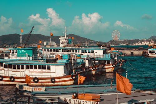Gratis arkivbilde med båter, bukt, by, dagslys