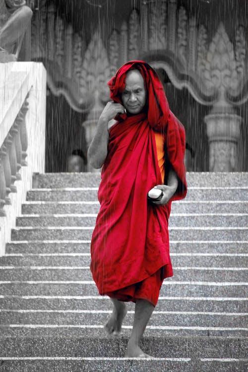 Fotos de stock gratuitas de blanco negro, Budismo, budista, raing