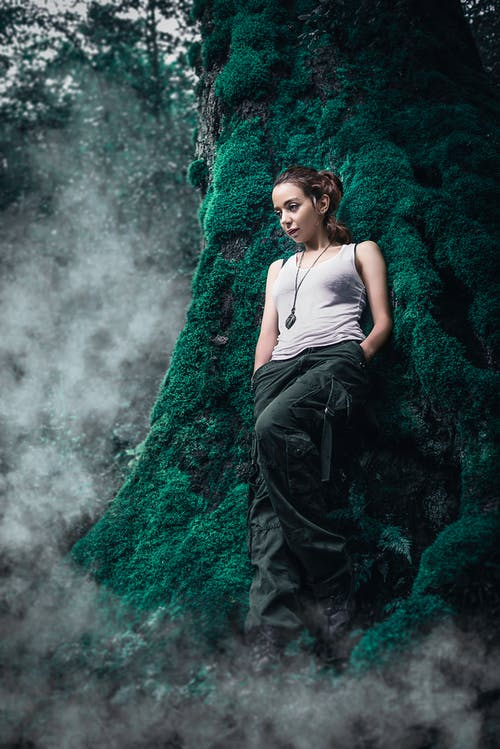 Free stock photo of clouds, forest, jungle, model