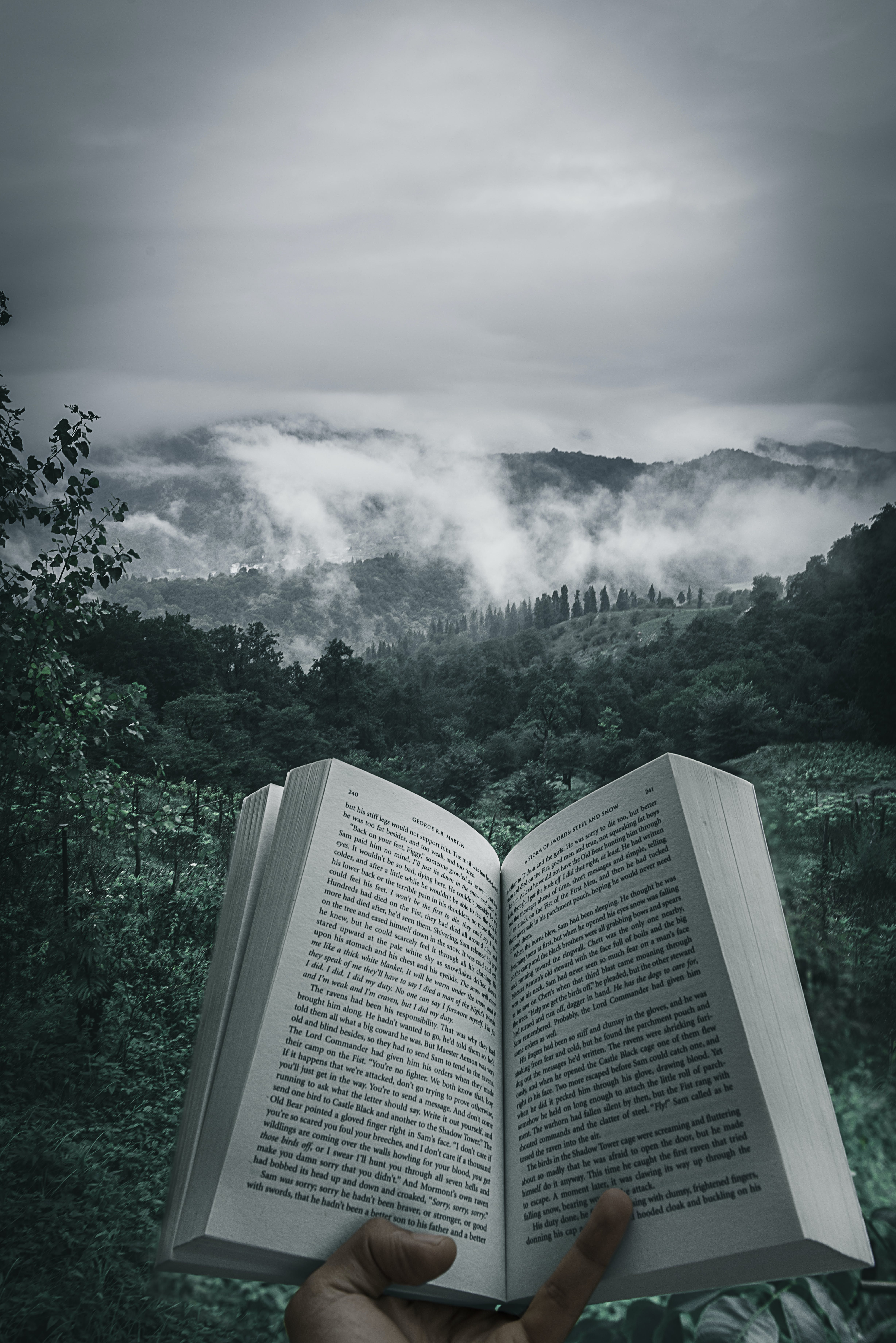 Free stock photo of book, clouds, forest, jungle