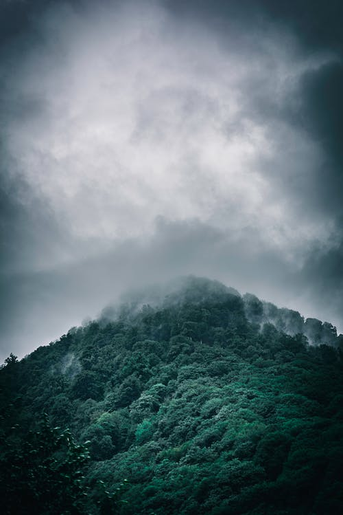 Free stock photo of clouds, forest, jungle, mountain