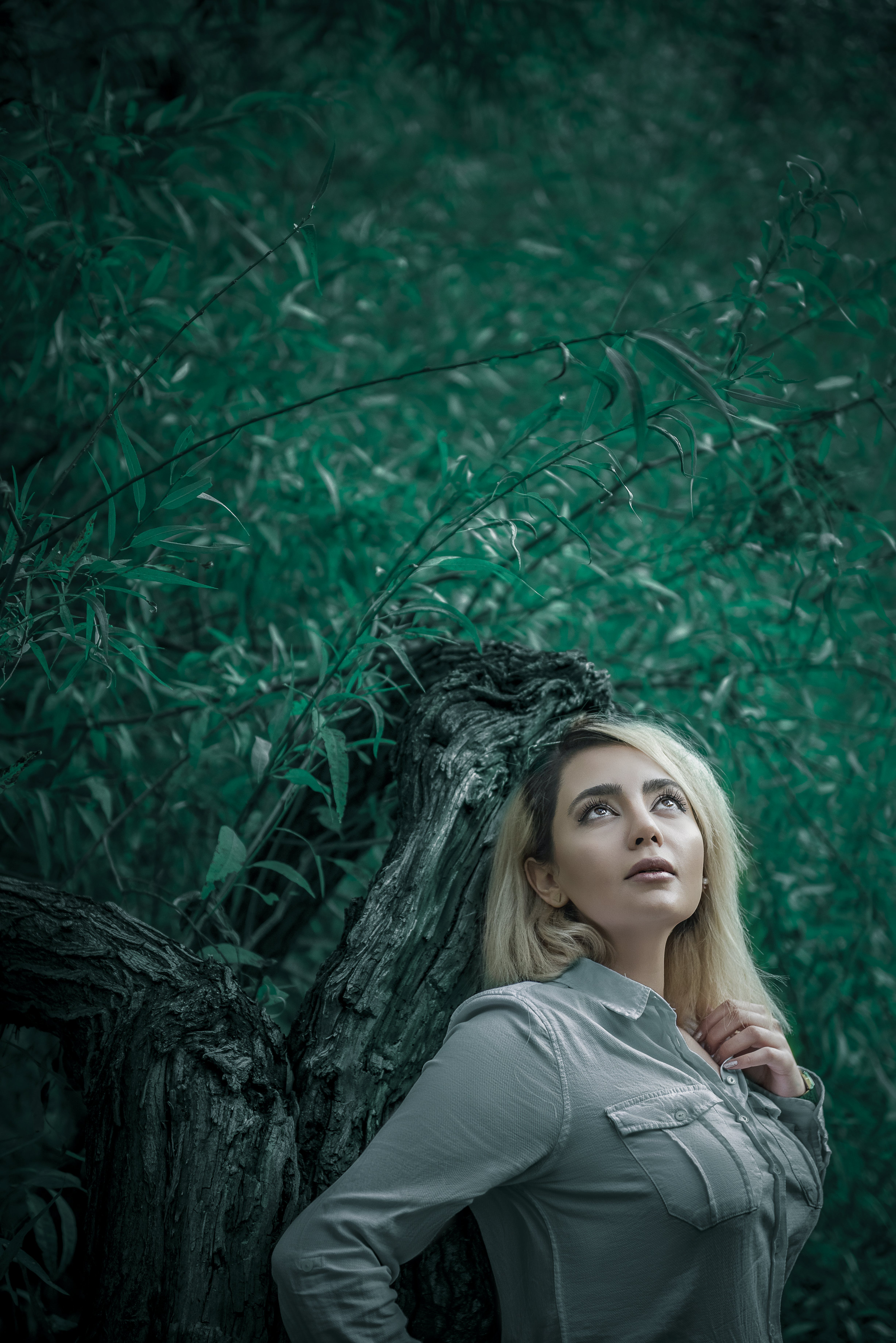 Free stock photo of clouds, forest, girl, jungle