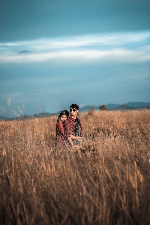 Kostnadsfri bild av åkermark, dagsljus, fält, fotografering