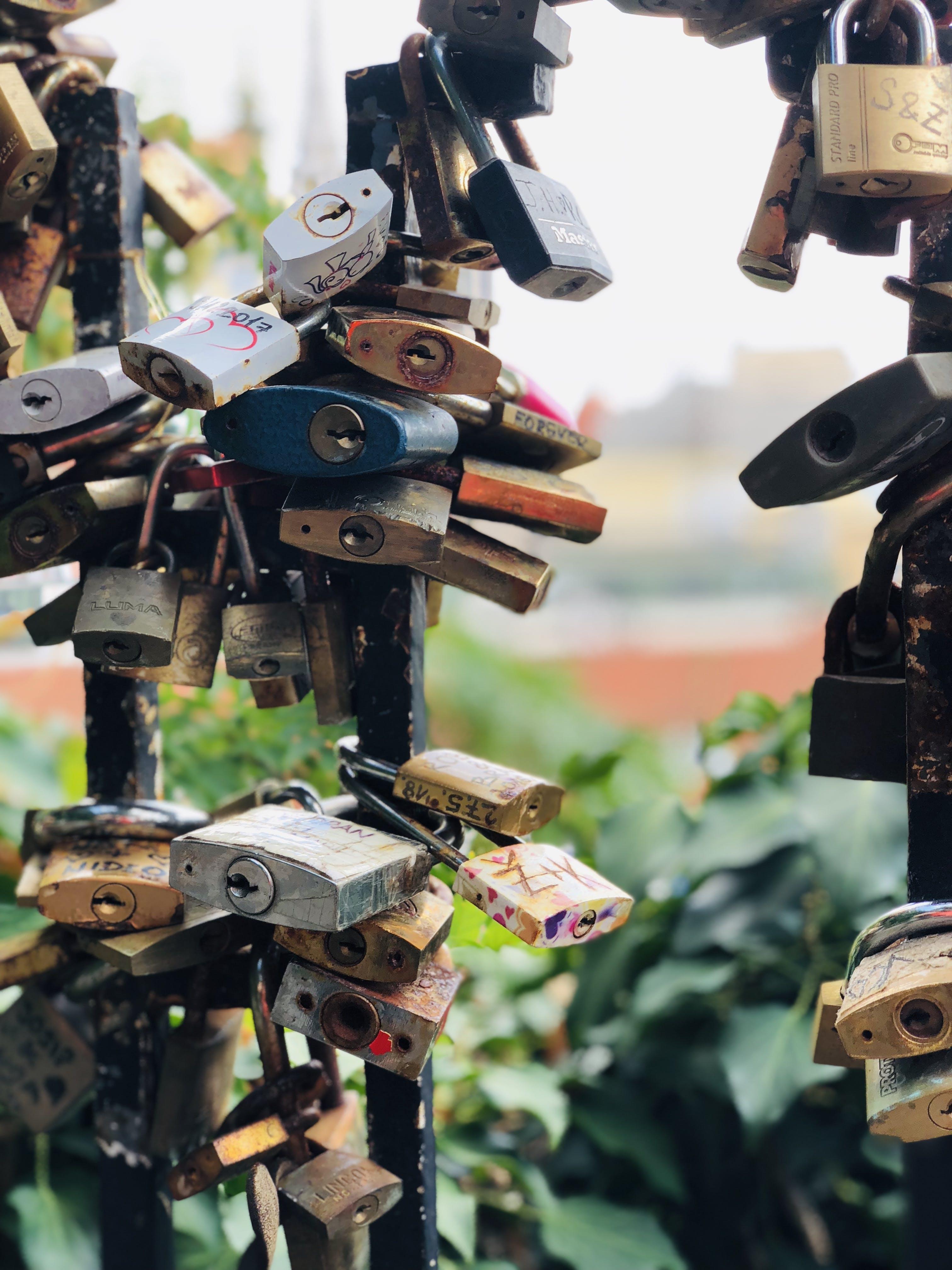 Assorted-color Padlocks Locked Up in Black Metal Fences