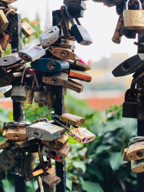 Foto profissional grátis de aço, cadeados, cadeados de amor, close