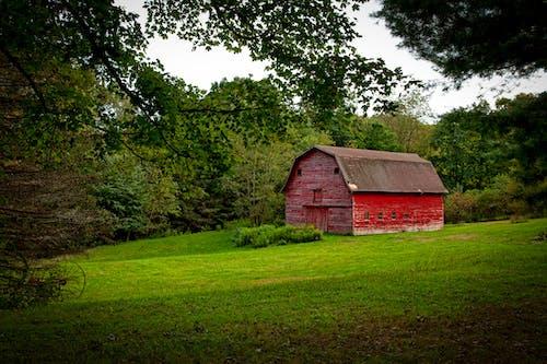 Foto profissional grátis de área, árvores, barracão, campo