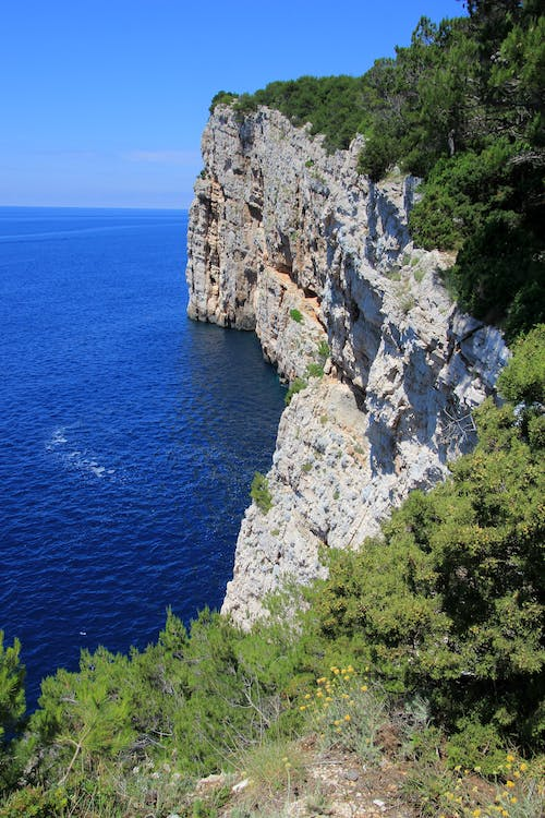 White Rock Cliff With Green Leaf Trees Near Blue Body of Water during Daytime