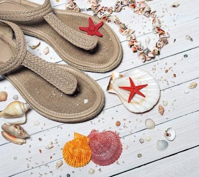 Beige Thong Flat Sandals Placed Beside Seashells