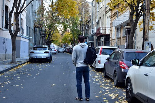 Free stock photo of autumn city, autumn street, life