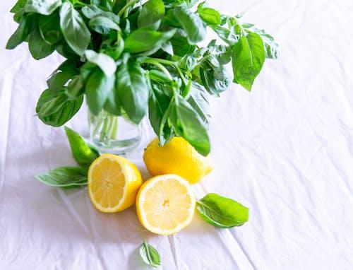Бесплатное стоковое фото с базилик, вкусный, диета, еда