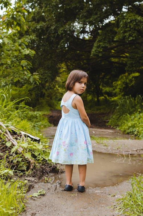 Darmowe zdjęcie z galerii z chodzący ludzie, drzewa, dziewczyna, las