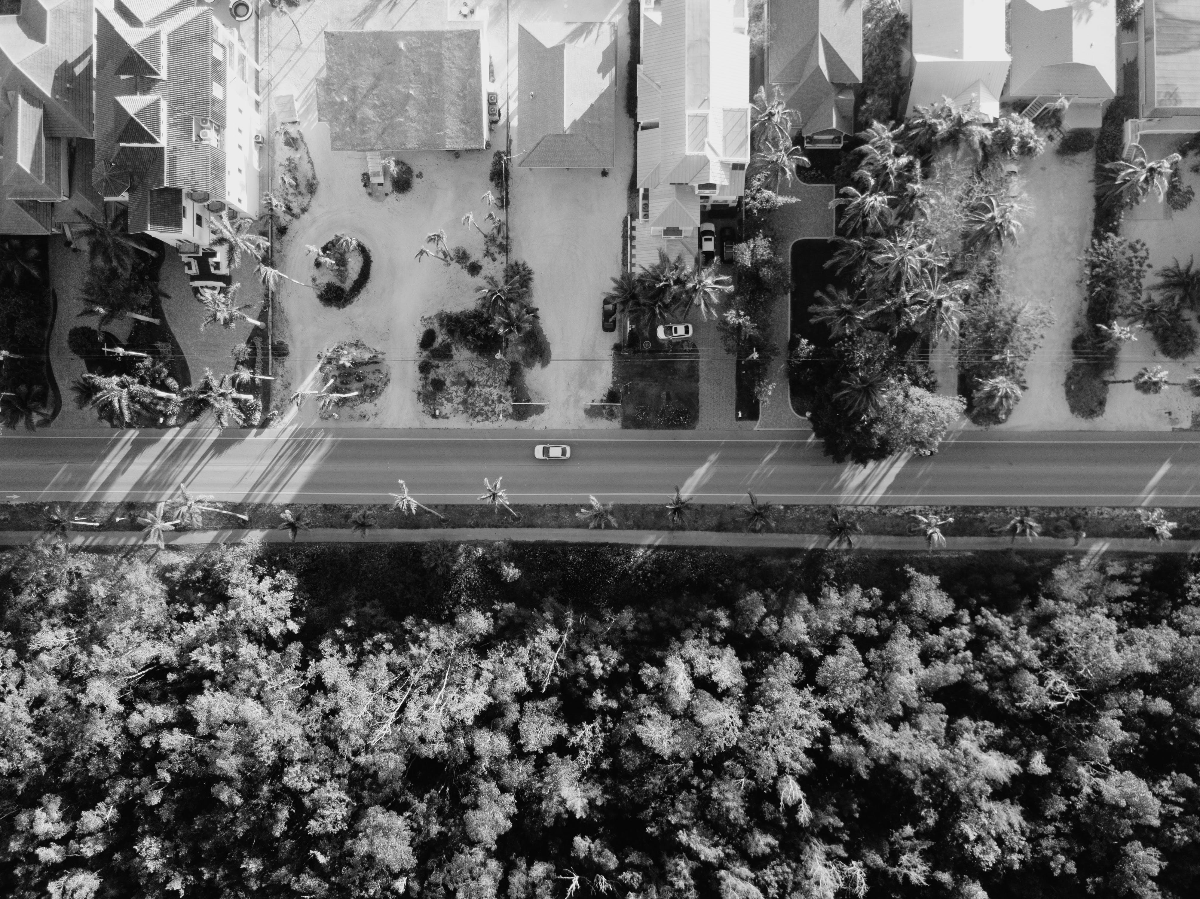 Kostenloses Stock Foto zu schwarz und weiß, vogelperspektive, straße, häuser