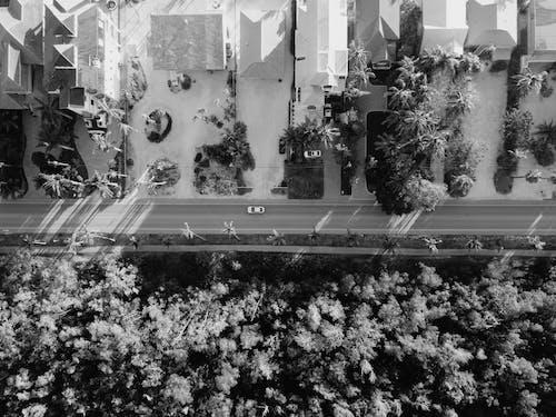 Gratis stockfoto met automobiel, automotive, autoweg, bird's eye view
