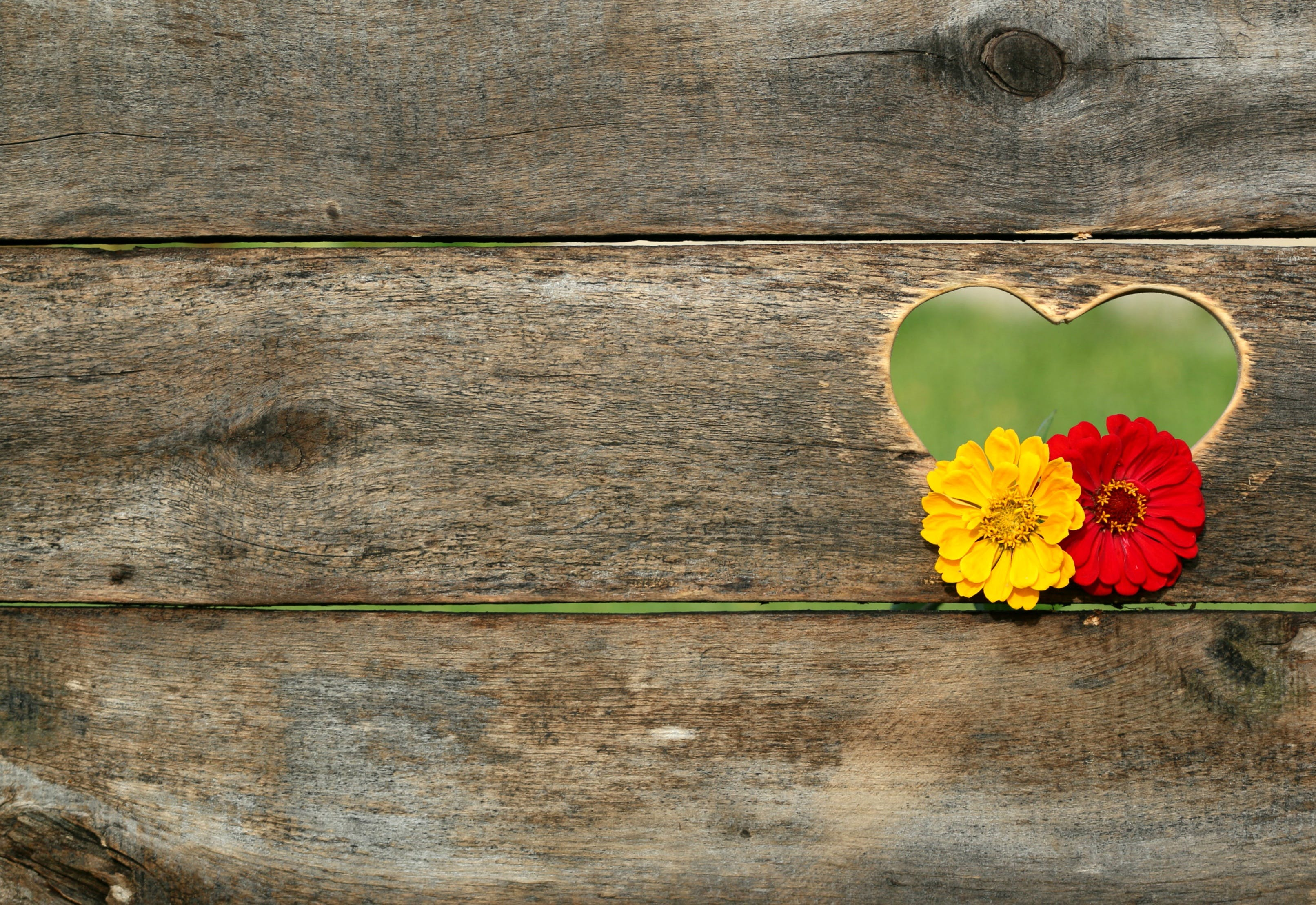 Yellow and Red Flower on Brown Heart Wooden Carved Panel
