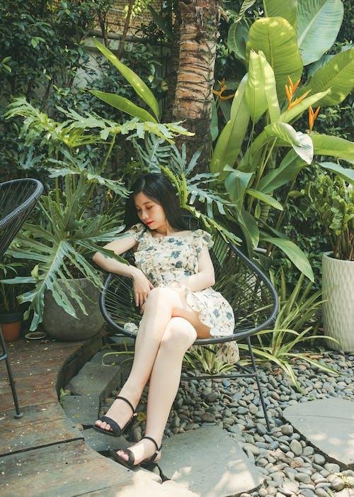 Mujer Sentada En Una Silla Negra Cerca De árboles Y Plantas