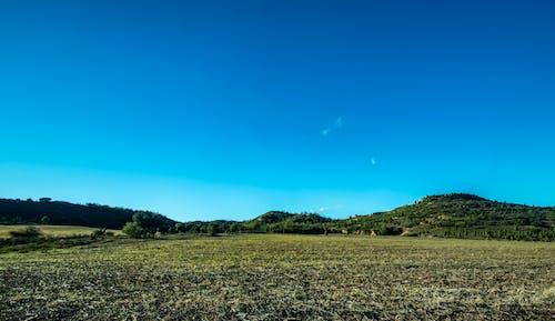 Free stock photo of beautiful, blue, field, green