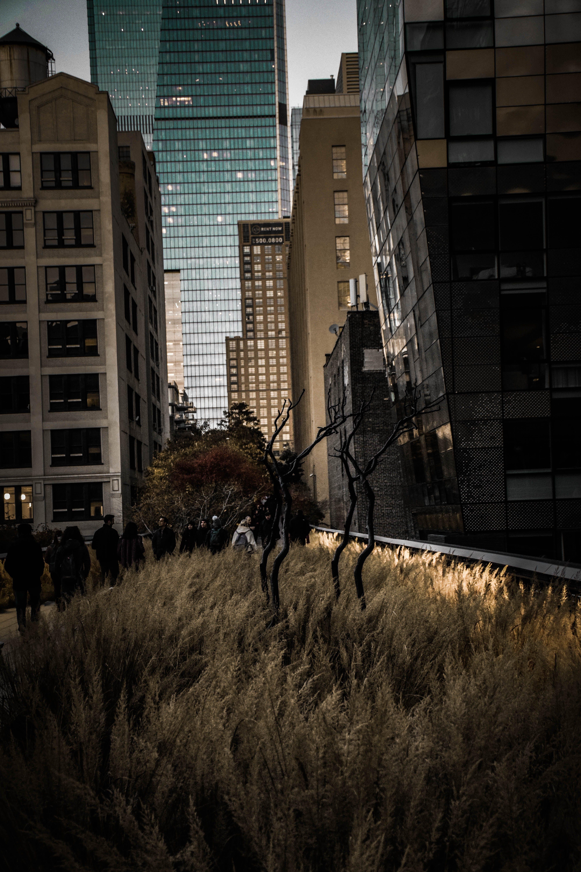Kostenloses Stock Foto zu architektur, außen, dunkel, gebäude
