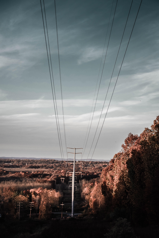 acier, câble d'alimentation, câbles