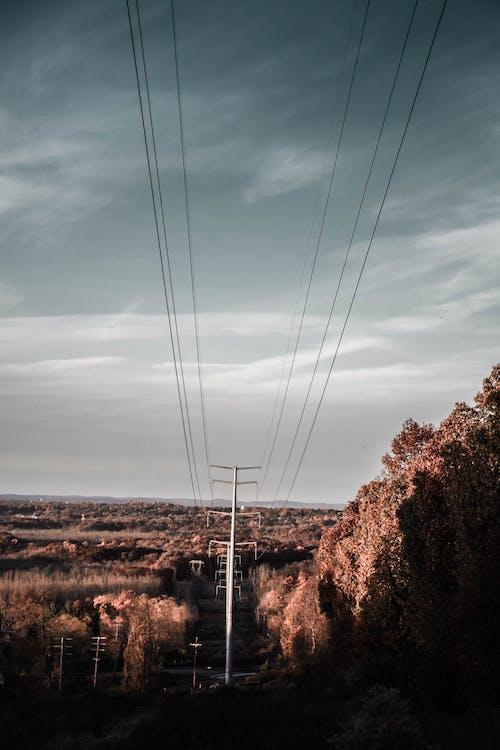 высокий, высокое напряжение, кабели