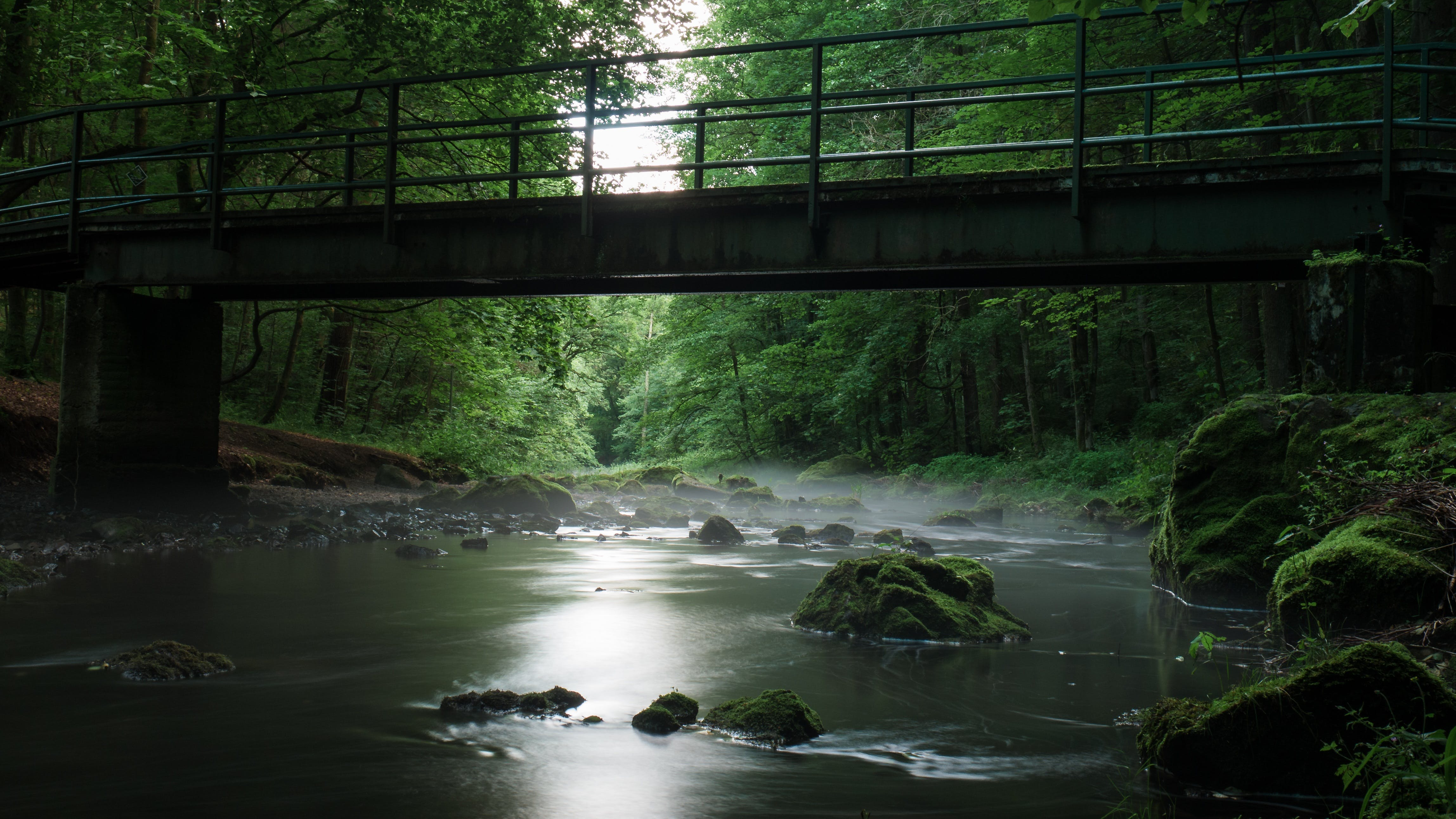River With Rocks Under Bridge Surrounded by Green Leaf Trees during Daytime