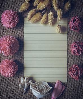 Pink Chrysanthemum Table Decor