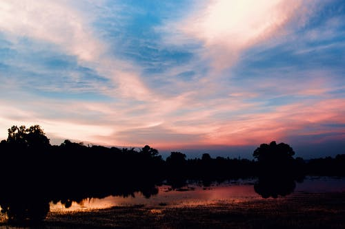 Photos gratuites de arbre, ciel, ciel bleu, ciel rouge