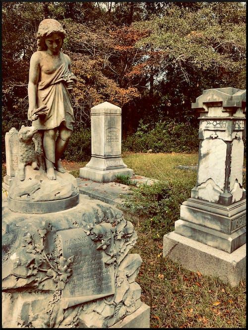 Gratis stockfoto met begraafplaats, grafstenen, grafteken, graven