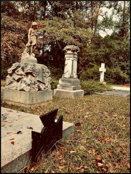 Gratis stockfoto met begraafplaats, dood, graven