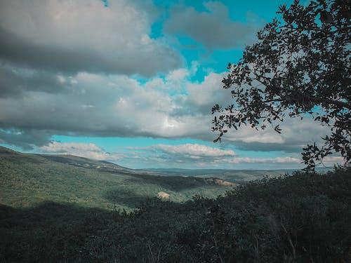 Ingyenes stockfotó ég, fényképész, kék ég, nemzeti park témában
