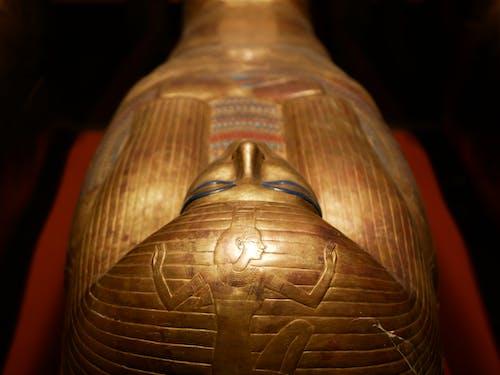 Gratis lagerfoto af Egypten, egyptisk, gammel, glyf