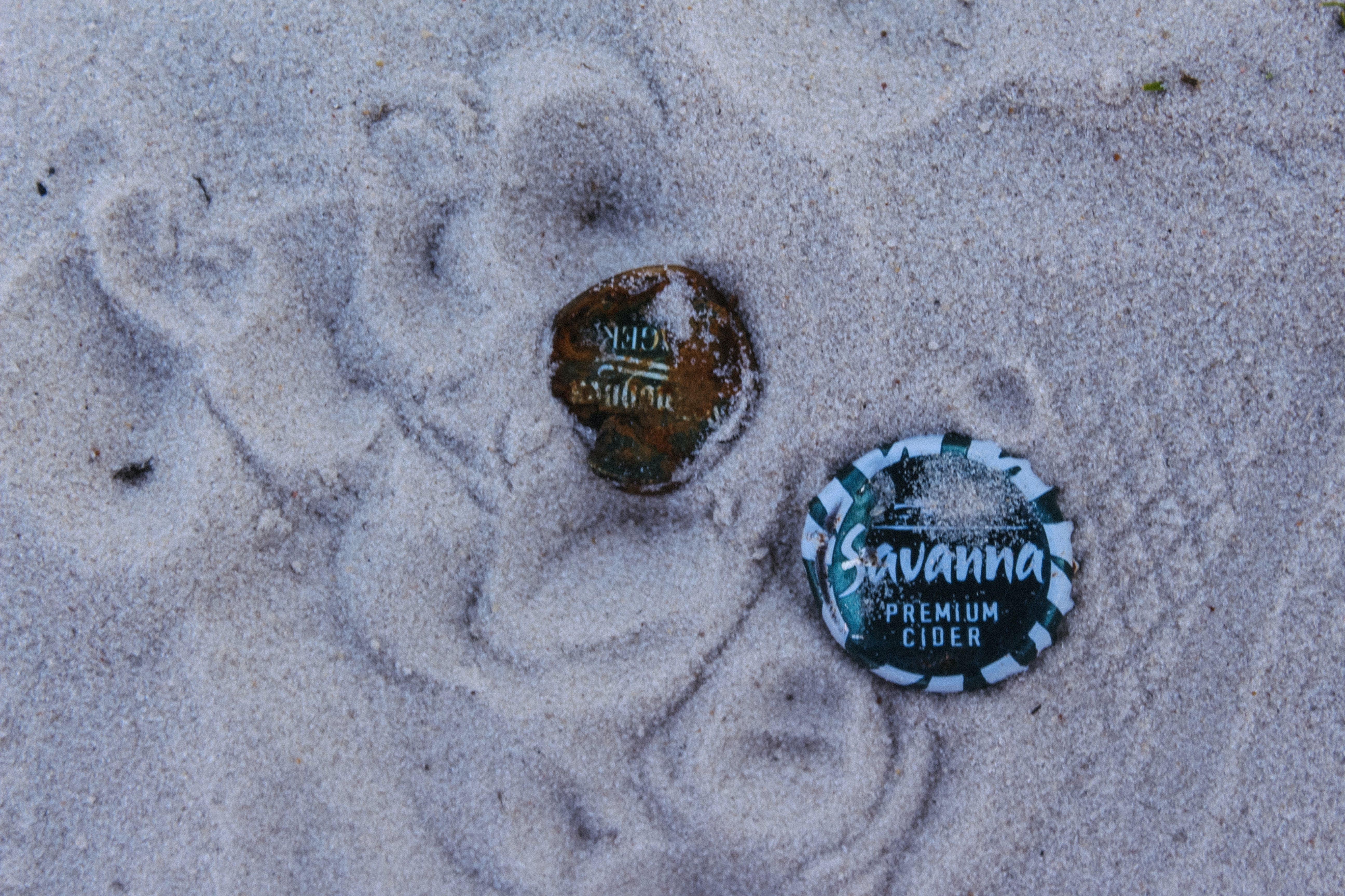 Free stock photo of savanna