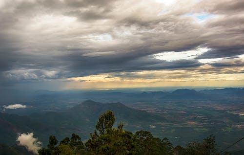 Immagine gratuita di alba, alberi, cieli nuvolosi, cielo