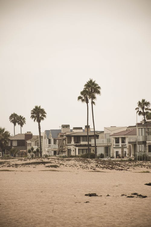 Kostnadsfri bild av arkitektur, havsstrand, hus, Palmer