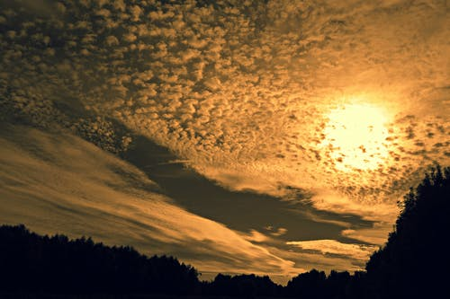 Foto d'estoc gratuïta de alba, arbres, capvespre, cel