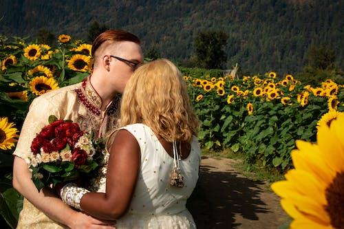 向日葵田, 婚禮, 异族, 异族婚姻 的 免费素材照片