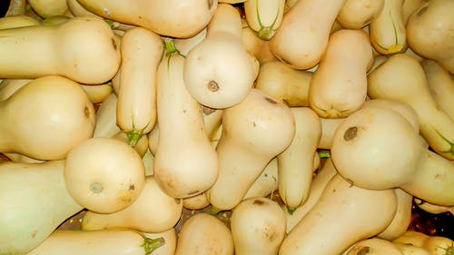 Free stock photo of vegetables