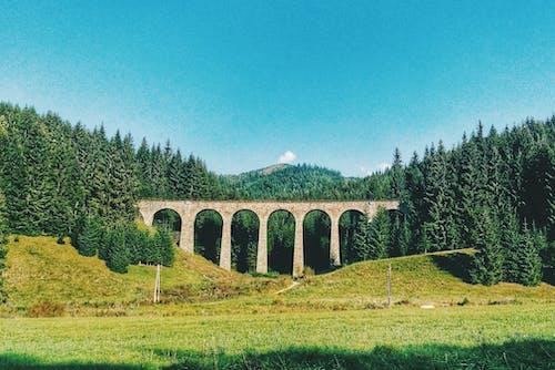 Kostnadsfri bild av bro