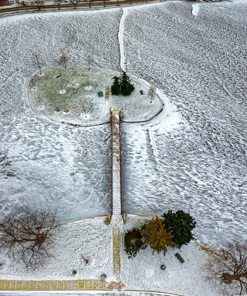 Imagine de stoc gratuită din abstract, anotimp, apă, arbori