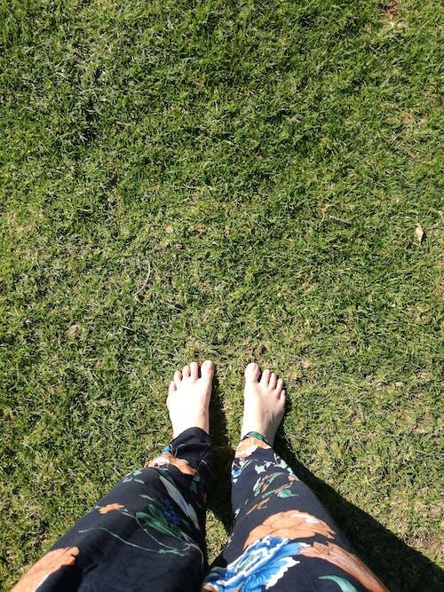 맨발, 발, 잔디, 초록 풀의 무료 스톡 사진