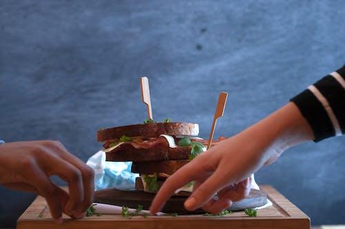 샌드위치, 설정, 손, 음식의 무료 스톡 사진