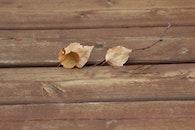 wood, texture, wooden