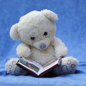 100 interesting teddy bear photos pexels free stock photos white teddy bear with opened book photo altavistaventures Images