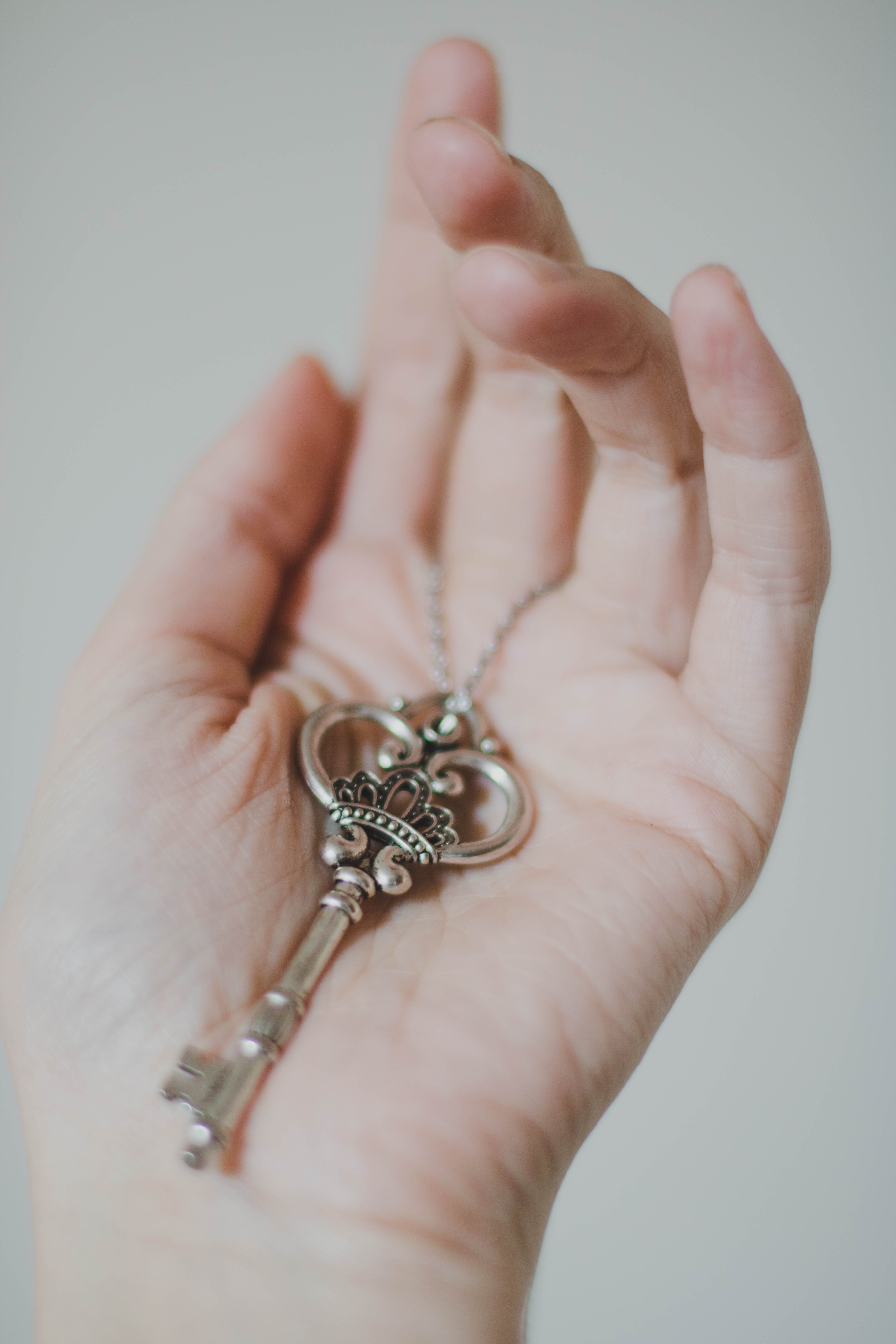 Person Holding Silver-colored Skeleton Key